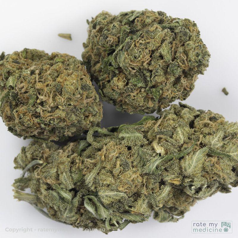 Cannatrek Lemnos Cannabis Flower lose buds